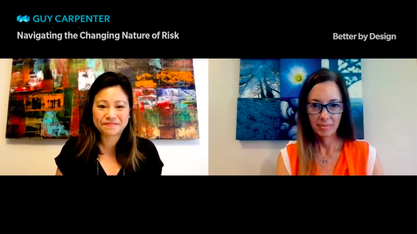 screen grab of navigating the changing nature of risk video